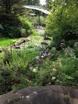 Cascadia Garden