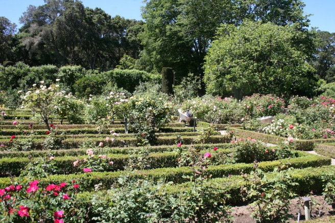 A Year In The Garden…Filoli In May | Queen Of The Dirt