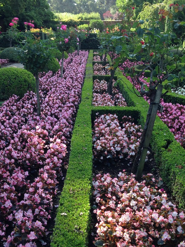 A Year in the Garden…Filoli in August   Queen of the Dirt
