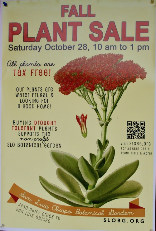 Lucky For Me, My Visit Coincides With The Annual Fall Plant Sale. Knowing  That The Early Shopper Gets The Best Selection I Am Headed There First, ...