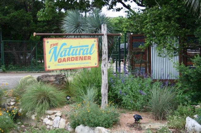 Nat Gardner 1