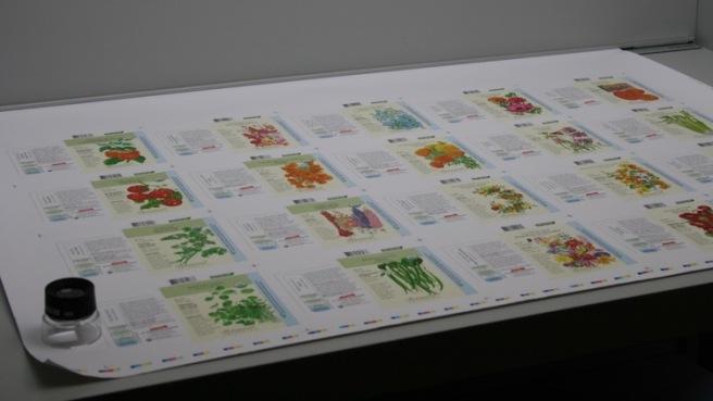 GBF postcard 4